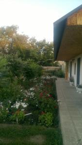 Guest House Olga - Sol'-Iletsk