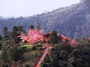 Hostels und Jugendherbergen - Pousada Off Road A Casa da Montanha