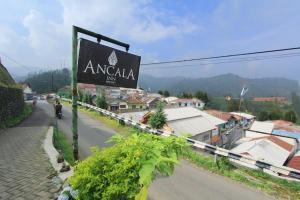 Auberges de jeunesse - Ancala Inn Bromo