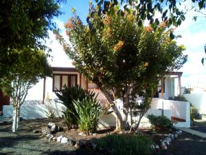 Holiday home Calle Alamo - Mala