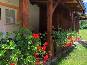 Rooms Family Glumac, Penzióny  Jezerce - big - 99