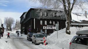 Hotel Bozi Dar - Excalibur - Bozí Dar