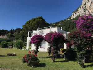 Marunnella Rooms & Apartment, Guest houses  Capri - big - 29