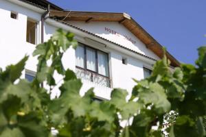 Family Hotel Joya, Hotel  Varna - big - 11