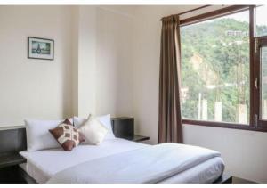 Auberges de jeunesse - Breath-taking valley view rooms in shimla