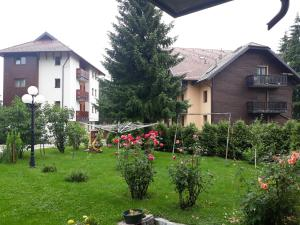 Apartments Tofilovic, Apartments  Zlatibor - big - 31