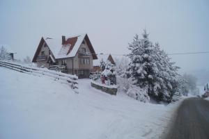 Apartamenty i pokoje rodzinne - Apartment - Czarna Góra