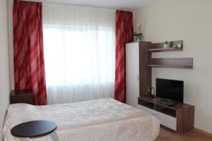 Апартаменты на Владимирской - Rodina