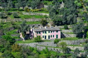 obrázek - Villa Olivari - apt il Cedro