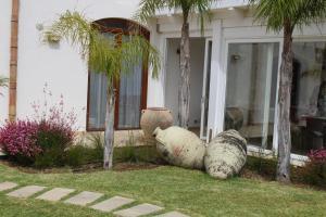 Villa delle Anfore, Guest houses  Scopello - big - 13