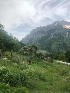 Guesthouse Kukaj - Theth