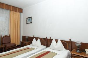 Standard Double or Twin Room Hotel Petrosani