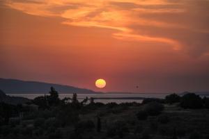 Alexander villa Aegina Greece