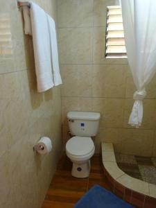 Double Room with Private Bathroom Conrods Negril Guesthouse