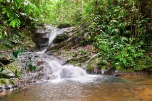 Aiman Batang Ai Resort and Retreat (22 of 44)