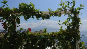 Grand Hotel Vesuvio (10 of 66)