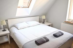 Attic Apartment Gdansk Downtown