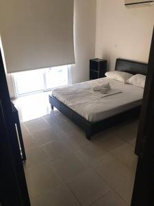 Chairallas Nicoleta, Prázdninové domy  Paralimni - big - 8