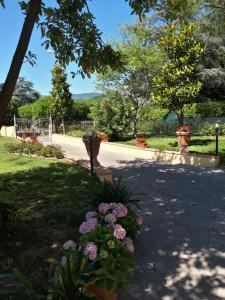 obrázek - Villa Monica
