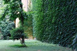 Guerrazzi Luxury Apartment - AbcAlberghi.com