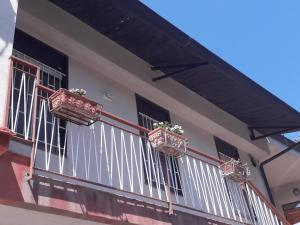 obrázek - Balconi Fioriti