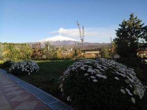 Good Morning Etna - AbcAlberghi.com