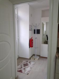 Apartmaji Kala