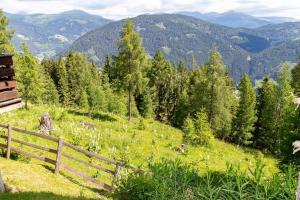 Neuwirth Hütte, Holiday homes  Haidenbach - big - 10
