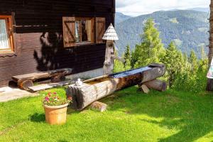 Neuwirth Hütte, Дома для отпуска  Гнезау - big - 22