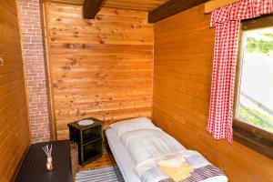 Neuwirth Hütte, Дома для отпуска  Гнезау - big - 18
