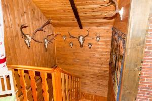 Neuwirth Hütte, Дома для отпуска  Гнезау - big - 13