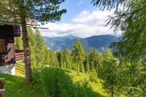 Neuwirth Hütte, Holiday homes  Haidenbach - big - 13