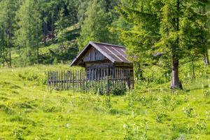 Neuwirth Hütte, Holiday homes  Haidenbach - big - 7