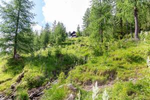 Neuwirth Hütte, Holiday homes  Haidenbach - big - 5