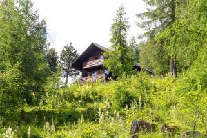 Neuwirth Hütte, Дома для отпуска  Гнезау - big - 59