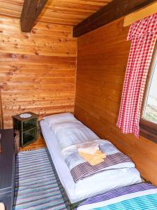 Neuwirth Hütte, Дома для отпуска  Гнезау - big - 33