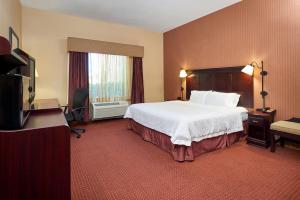 Hampton Inn & Suites Buda, Szállodák  Buda - big - 2