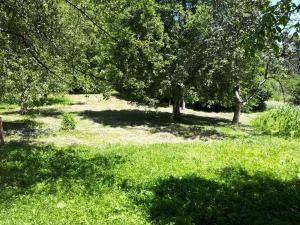 Guesthouse in Utsera, Affittacamere  Utsera - big - 49