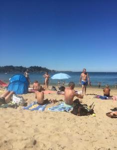 obrázek - Appart Cosy Park Beach