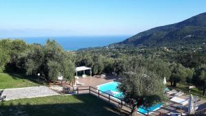 Tenuta Terre di Bosco - Caselle in Pittari