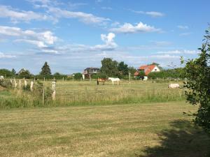 Haus Deichblick - Wulfen auf Fehmarn - [#92207], Nyaralók  Fehmarn - big - 15