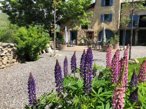 Accommodation in Angoustrine