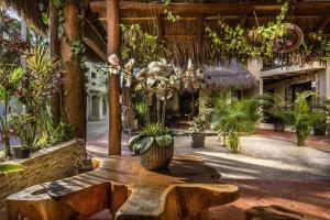Hotel Villas El Jardín, Hotels  Holbox - big - 24