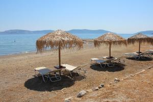 Vassia 3 Argolida Greece