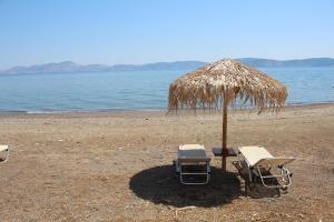 Vassia 2 Argolida Greece