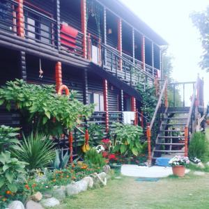 BLACK-HOUSE, Penzióny - Picunda