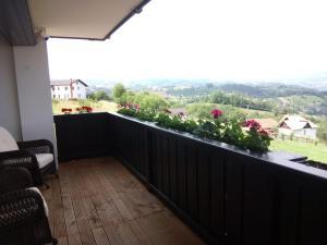 Bran Monte Crai Chalet, Guest houses  Bran - big - 4