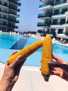 Konak Seaside Resort, Apartmanok  Alanya - big - 97
