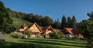 Weinhof Klug-Krainer - Apartment - Deutschlandsberg