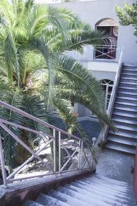 La Villa Nova (20 of 66)